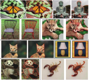 Examples of symmetry-integrated segmentation results usingimages from the Caltech-101 database