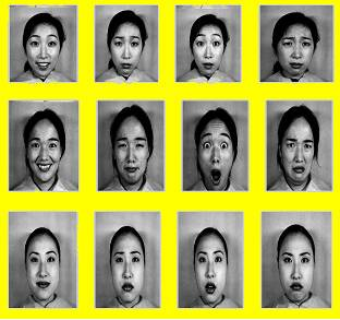 The model method in facial recognition